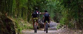 mountain-bike-tour-in-furnas-thematic-to
