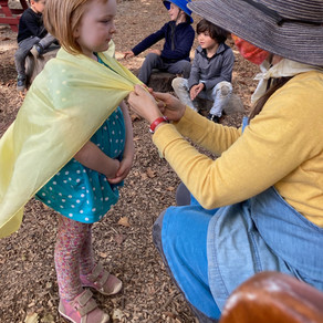 The Magic of Storytelling in Kindergarten