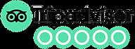 TripAdvisor Home Page-min.png