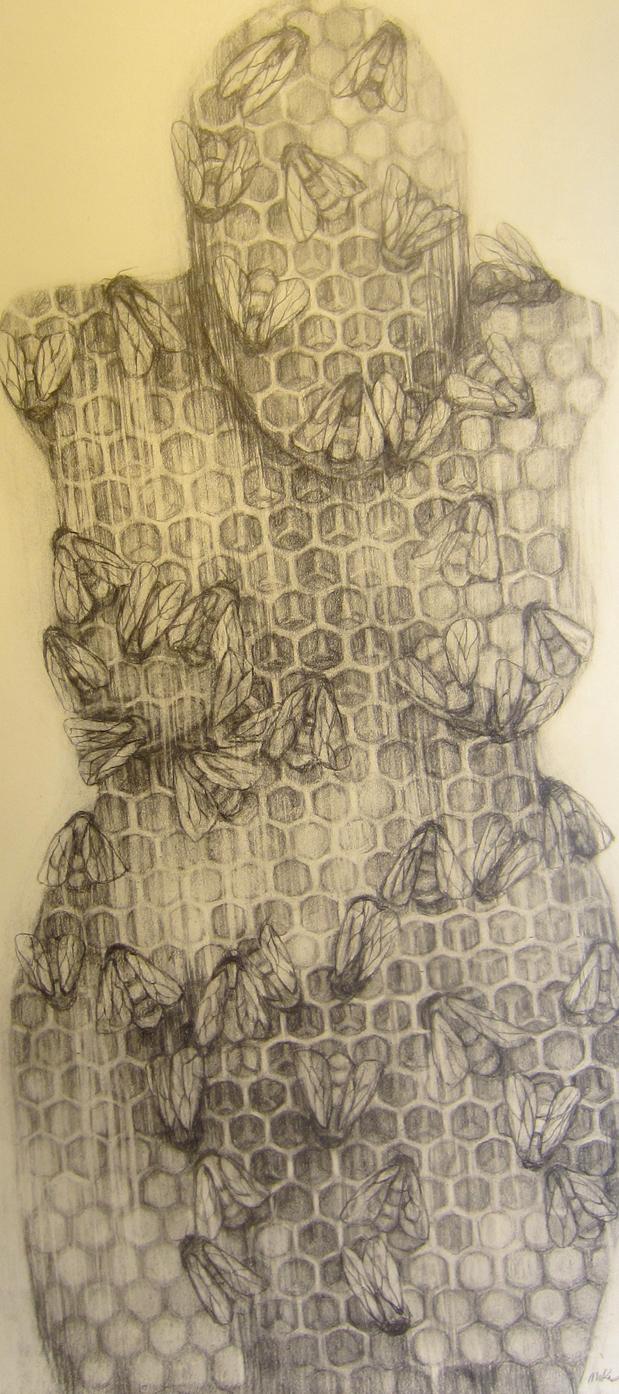 Venus series hive #2