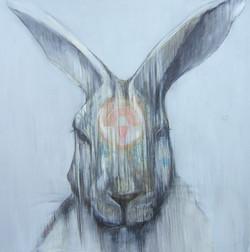 Adornment Rabbit