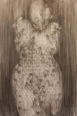 Venus Series-Hive, #1