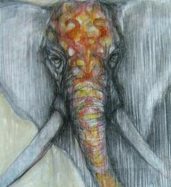 Adornment Elephant 1. 20x24. - Copy - Copy