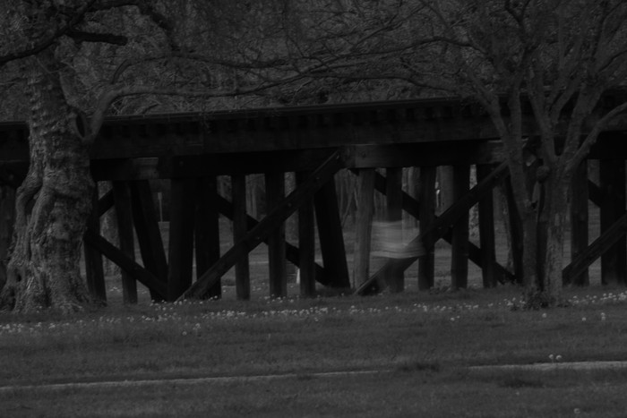 Is Trinity Park Haunted or Not?