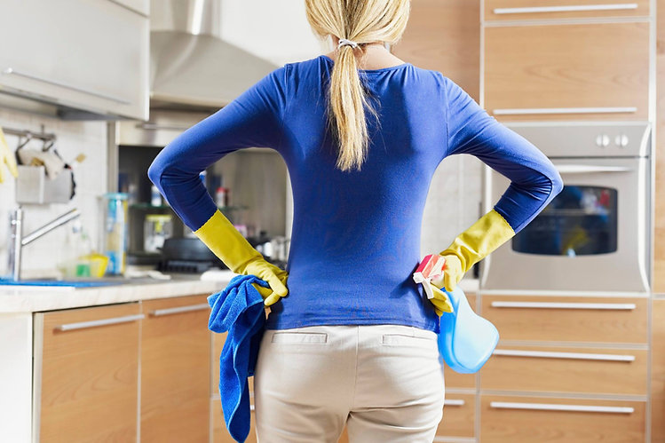 house cleaner, maid, cleaning person