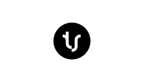 Terje Saether logo