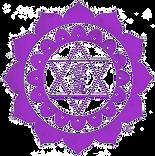 leveildesoi symbol reiki karuna