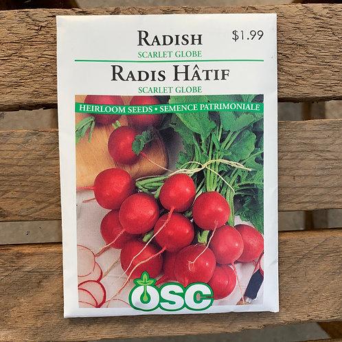 Radish- Scarlet Globe