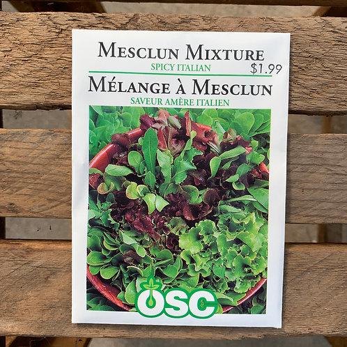 Mesclun Mixture - Spicy Italian
