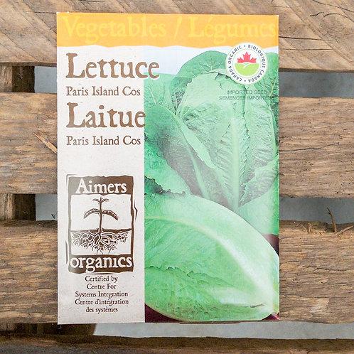 Lettuce - Paris Island - Organic