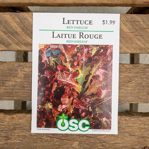 Lettuce - Red Oakleaf