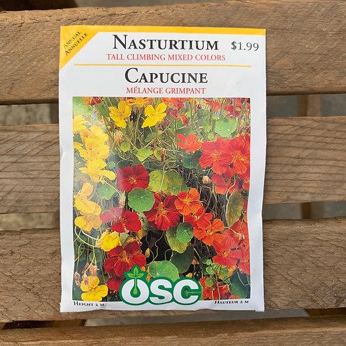 Nasturtium - Tall Climbing Mixed Colours