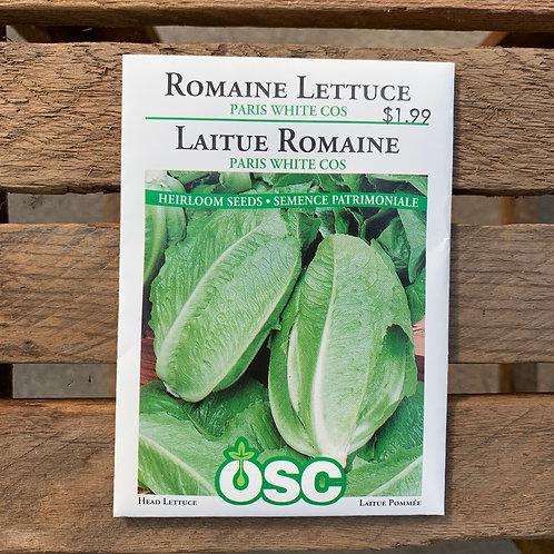 Lettuce - Romaine Paris White Cos