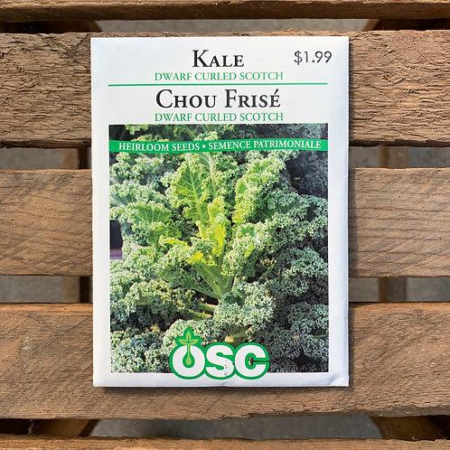 Kale - Dwarf Curled Scotch