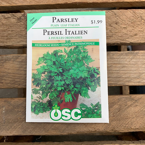 Parsley - Plain Leaf Italian