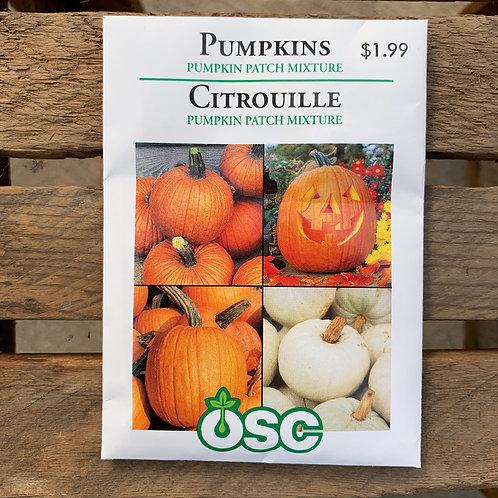 Pumpkin - Patch Mixture