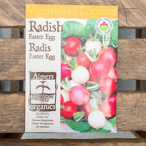 Radish - Easter egg- Organic
