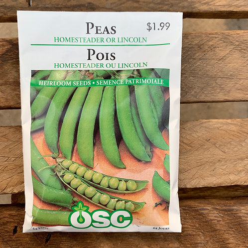 Peas - Homesteader or Lincoln