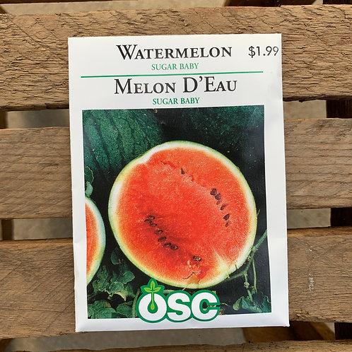 Watermelon - Sugar Baby