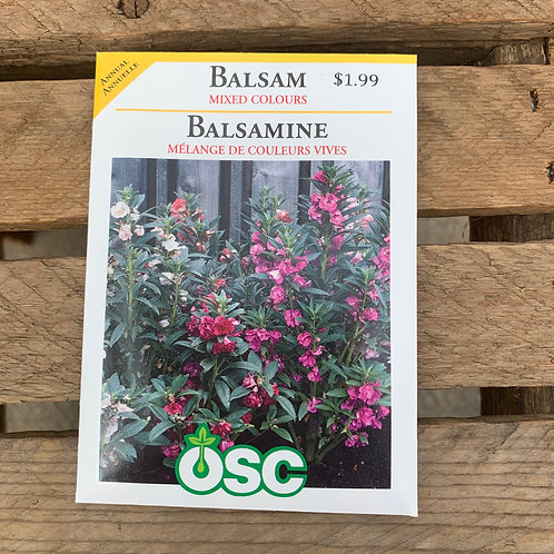 Balsam - Mixed Colours