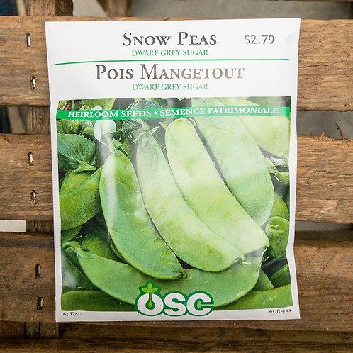Peas - Dwarf Grey Sugar