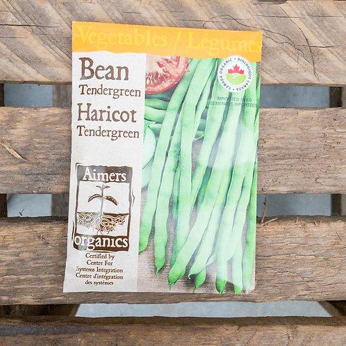 Beans - Tendergreen - Organic