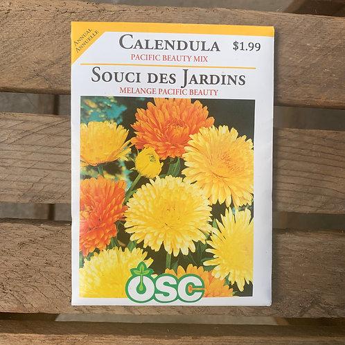 Calendula - Pacific Beauty Mix