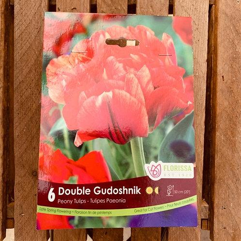 Peony Tulips - Double Gudoshnik
