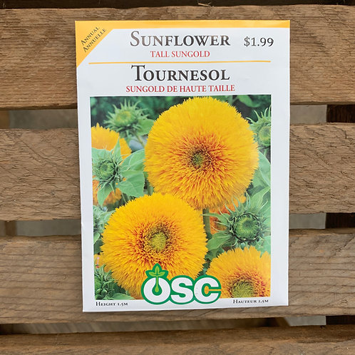 Sunflower -Tall Sungold