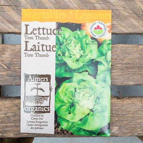 Lettuce - Tom Thumb - Organic
