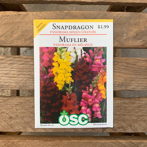 Snapdragon - Panorama Mixed Colours