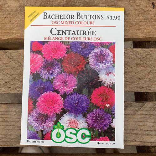 Bachelor Buttons - OSC Mixed Colours