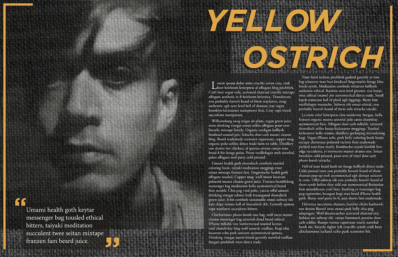 YellowOstrich_magspread2_web.jpg