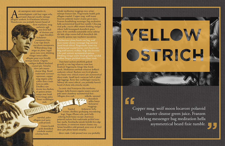 YellowOstrich_magspread1_web.jpg