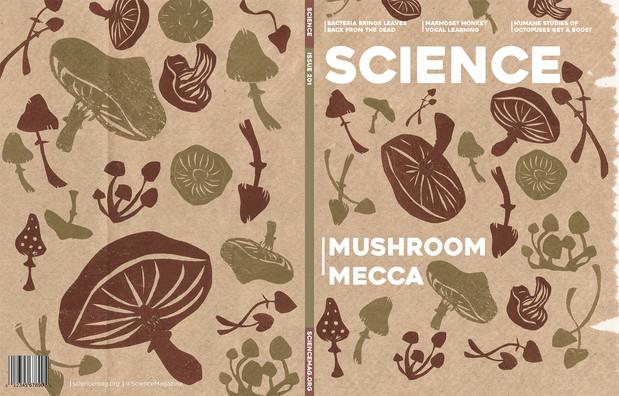 Sciencemag_mushroom_web.jpg