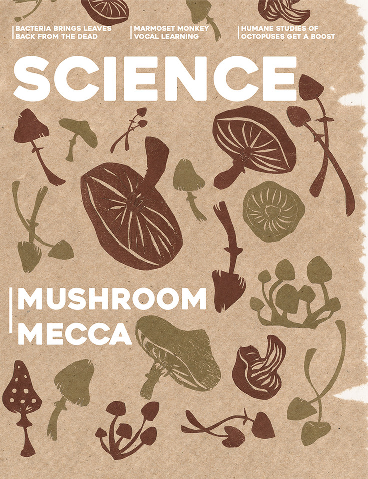 Sciencemag_mushroom_cover_web.jpg