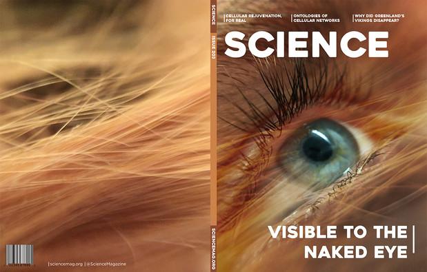 Sciencemag_eye_web.jpg