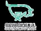 savage-bull-logo.png
