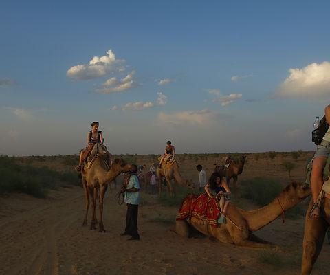 camel safari bikaner by tars
