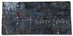 #3 - SILVER SPRAY