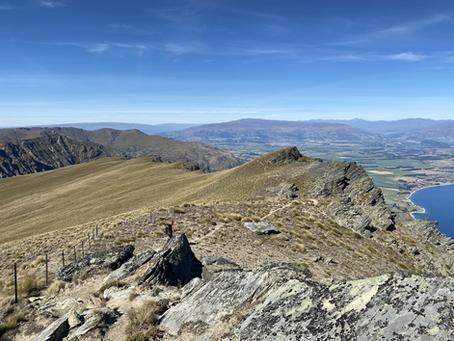 5. Otago: Part One - Twizel to Wanaka (Glendhu Bay). 160kms (412kms)