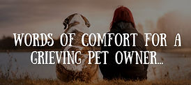 Words of comfort, grieving pet owner