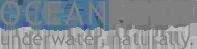 oceanreef-logo-grey.png