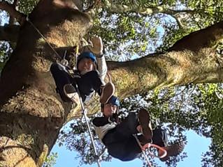 第二回目です(^^)木登り