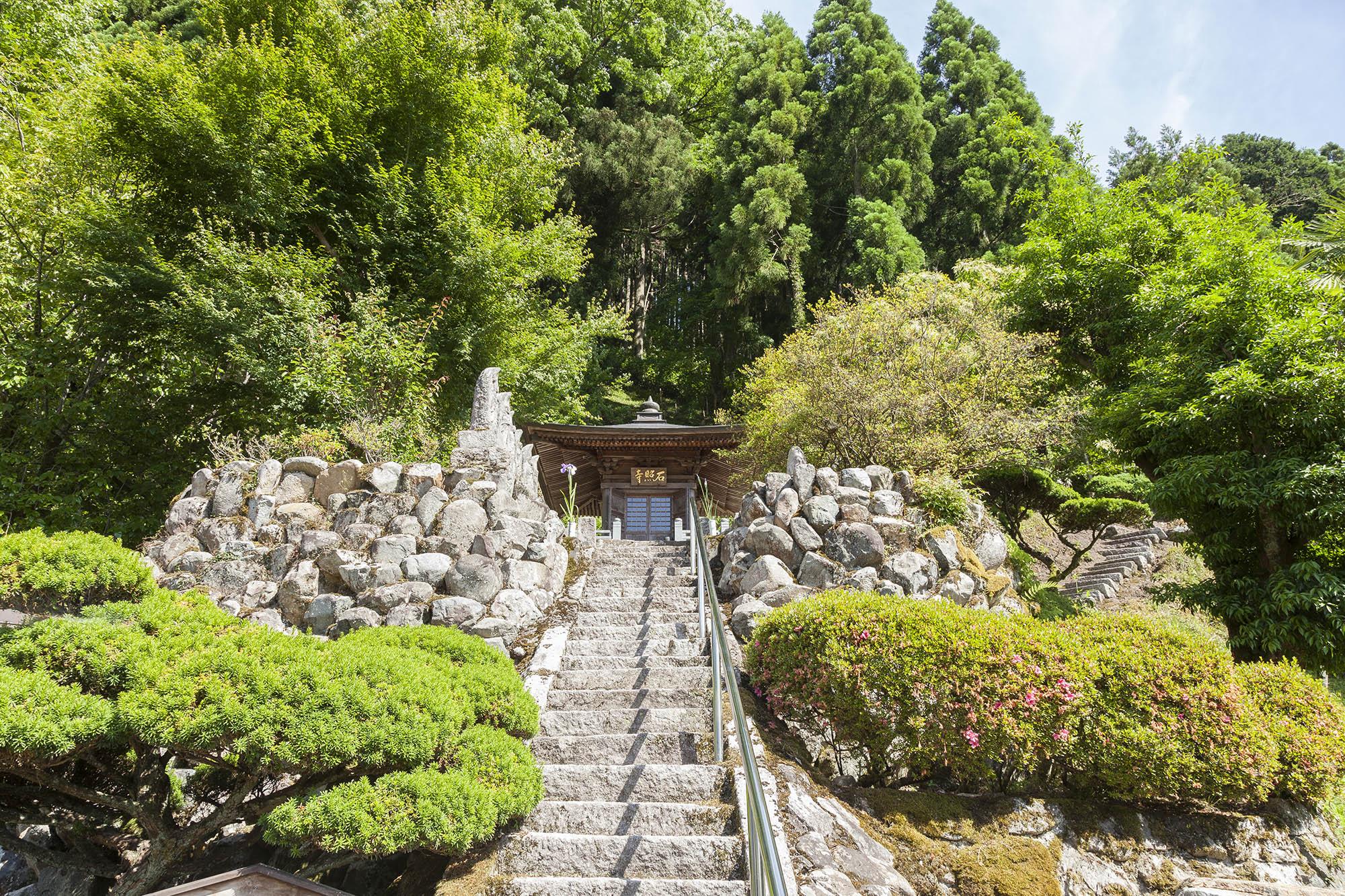 階段から望む石照寺