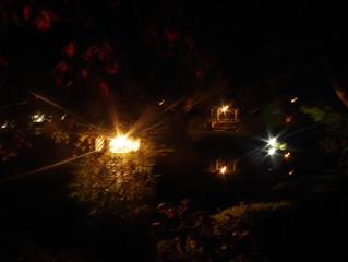 夜景ライトアップはじめました