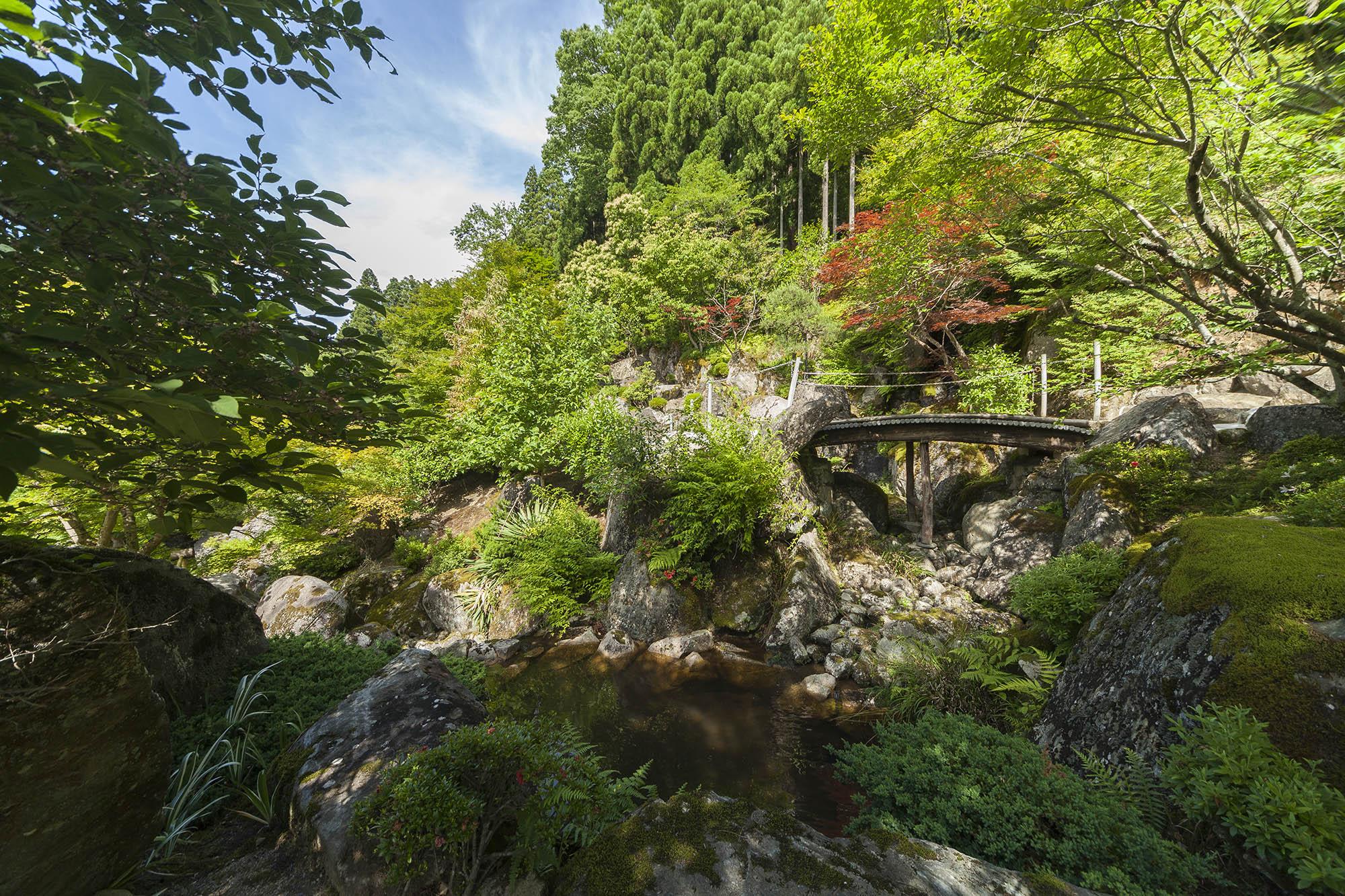 土橋下から望む石王山