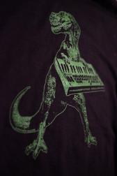 Tyrannosynthus T-Shirt Design