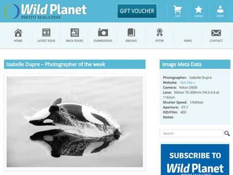 Photographe de la semaine pour Wild Planet Photo Magazine