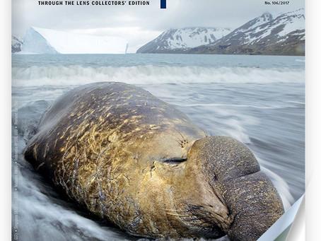 Publication dans Scuba Diver Ocean Planet Special Edition
